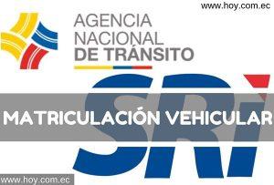 SRI Matriculación Vehicular en Ecuador 2019