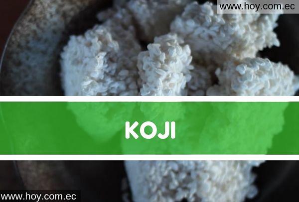 hongo koji arroz fermentado