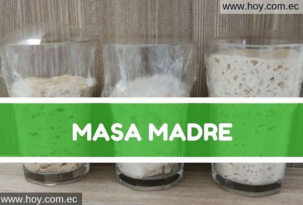 MASA MADRE NATURAL PARA HACER PAN