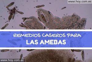 Remedios Caseros para las Amebas