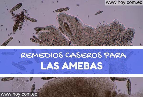 REMEDIOS NATURALES PARAS AMEBAS