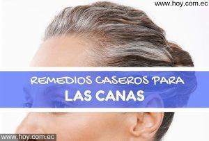 REMEDIOS NATURALES PARAS LAS CANAS
