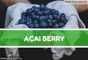Bayas de Acai o Acai Berry