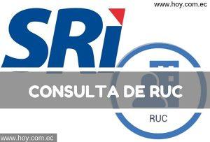 RUC: ¿Qué es?, Consulta de RUC – SRI